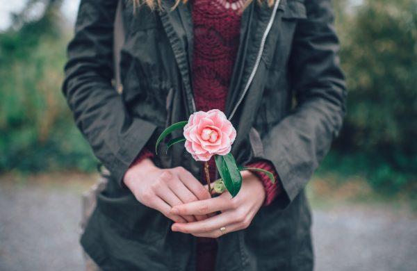 Rosa na mão de mulher_Terrárea
